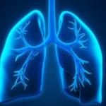 Φυτά και βότανα που θεραπεύουν τις λοιμώξεις του αναπνευστικού και καταπραϋνουν τους πνεύμονες