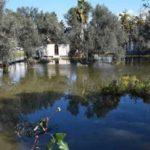 Σε κατάσταση έκτακτης ανάγκης κηρύχθηκαν περιοχές στη Χαλκίδα