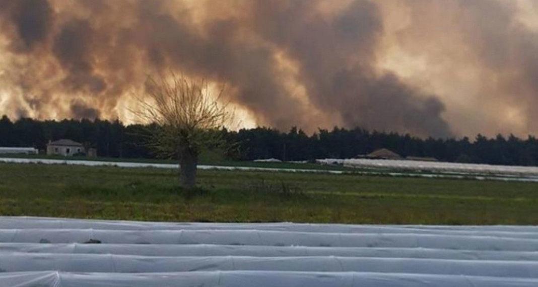 Σε εξέλιξη βρίσκεται η μεγάλη φωτιά, που εκδηλώθηκε νωρίτερα σε δασική έκταση στην περιοχή της Στροφυλιάς, στην δυτική Αχαΐα