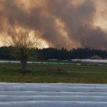 Ανεξέλεγκτη η πυρκαγιά στο δάσος της Στροφυλιάς – Καταστρέφεται σπάνιο οικοσύστημα