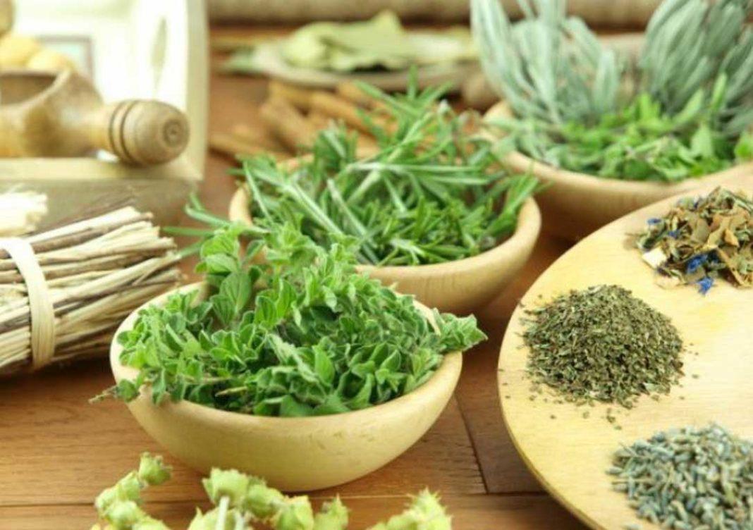 Τα φαρμακευτικά βότανα πρέπει να καταναλώνονται με προσοχή και με τη σύμφωνη γνώμη του γιατρού, κυρίως από όσους παίρνουν