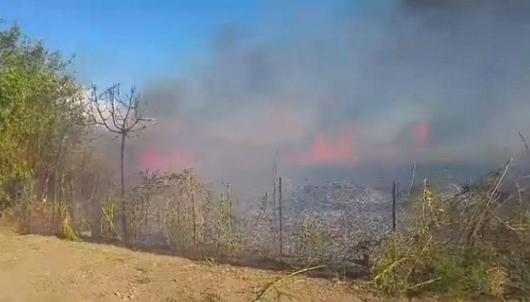 Μεγάλη πυρκαγιά στην Καλαμάτα- VIDEO
