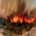 Φωτιά στην Εύβοια: Σε κατάσταση έκτακτης ανάγκης το νησί