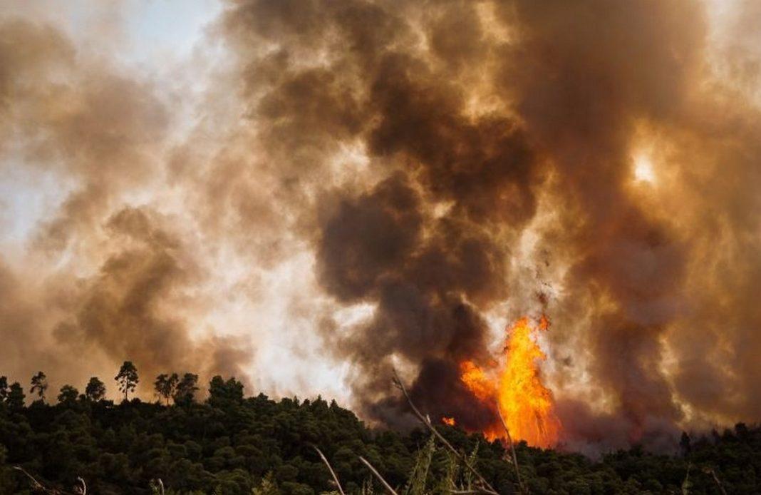 Μαίνεται αυτή την ώρα η φωτιά στην περιοχή ανάμεσα στα χωριά Αγριλίτσα Κοντοδεσπότι και Μακρυμάλλη στην Εύβοια