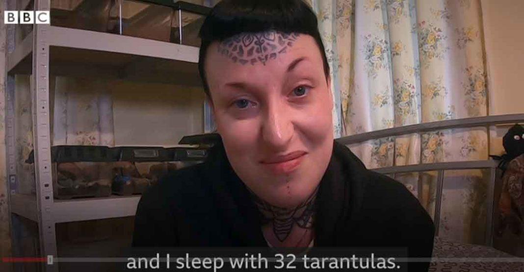 Μισούσα τις αράχνες αλλά τώρα κοιμάμε με 32 ταραντούλες. Τα βίντεο του Tarantula YouTube βοηθούν τη γυναίκα να νικήσει