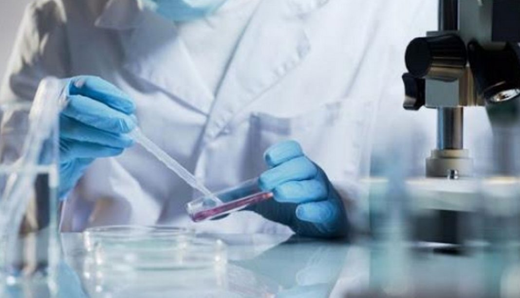 Συνδυάζοντας έναν ιό των νυχτερίδων με τον φονικό ιό του SARS, διεθνής ερευνητική ομάδα δημιούργησε έναν υβριδικό ιό που