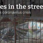 Εικόνες φρίκης στον Ισημερινό : Οι αρχές μαζεύουν πτώματα από τα σπίτια (VIDEO)