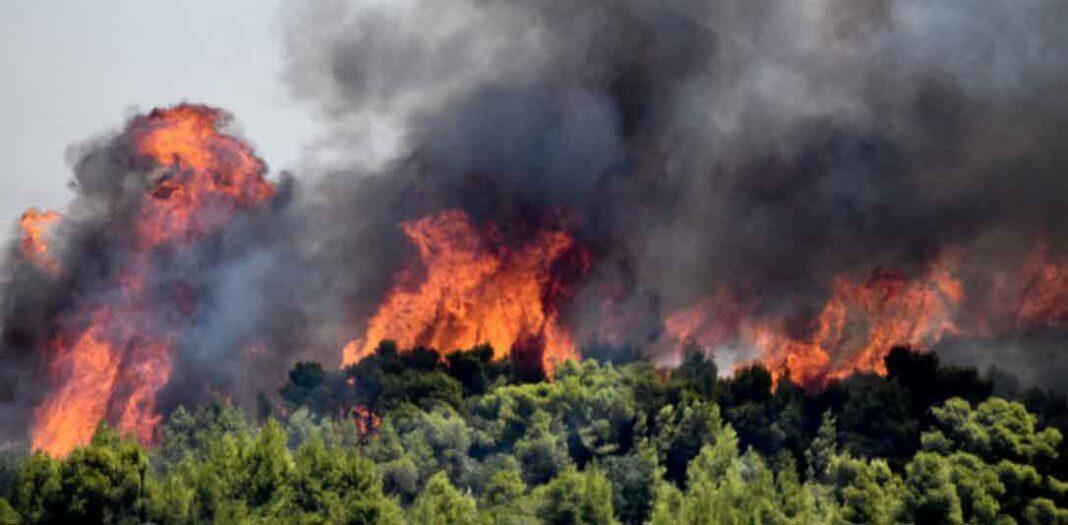 Απίστευτες αναφορές από αλλοδαπούς οι οποίοι μεταφέρονται στην Ελλάδα και σχολιάζουν ότι «Θεού θέλοντος ολη η Ελλάδα θα καεί»