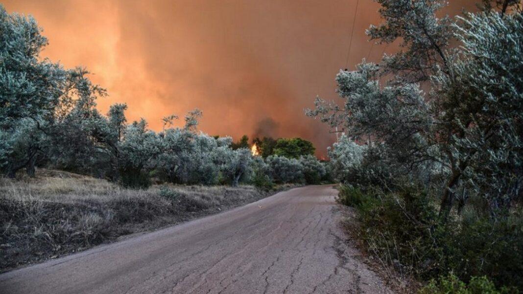 Κεχριές: Νέες ενεργές εστίες - Εκκενώθηκαν πέντε οικισμοί