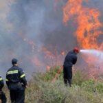 Ισχυρές δυνάμεις της πυροσβεστικής στην Επίδαυρο