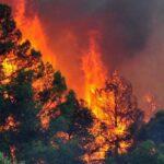 Φλέγεται η Ελλάδα – 62 φωτιές σε όλη την χώρα το τελευταίο 24ωρο….