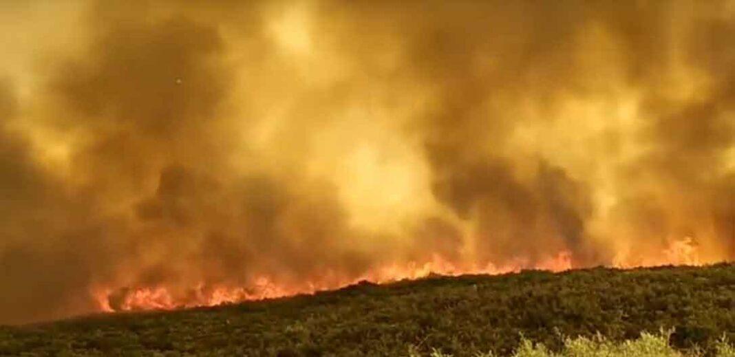Φωτιά στη Μάνη: Τι ανησυχεί την Πυροσβεστική