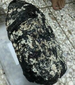 Απίστευτο.Ψαράς στην Taiwan βρήκε μυστηριώδη αρωματική πέτρα αξίας 6 εκατομμυρίων (USD)- PHOTO
