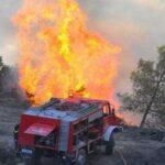Φωτιά τώρα στη Σταμάτα Αττικής κοντά σε σπίτια
