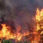Μεγάλη πυρκαγιά στα Γρεβενά: Εκκενώνονται οικισμοί